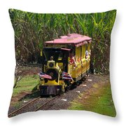 Dole Planation Throw Pillow