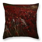 Dolly Sods Throw Pillow