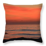 Dolphin At Cape Hatteras Throw Pillow
