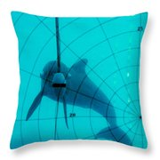 Dolphin Experiment Throw Pillow
