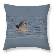 Dolphin I Mlo Throw Pillow