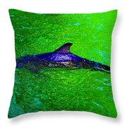 Dolphin In The Shallows Throw Pillow
