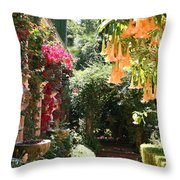 Dolphinfountain And Flowers - France Throw Pillow