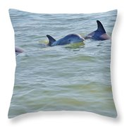 Dolphins 2 Throw Pillow