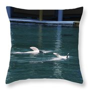 Dolphins Swimming Upside Down As Part Of Show Throw Pillow