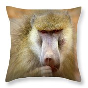 Dominant Male Baboon Throw Pillow
