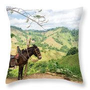 Donkey And Hills Throw Pillow