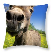 Donkey Throw Pillow by Bernard Jaubert