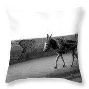 Donkey Cart In Marrakech Throw Pillow