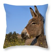 Donkey In Greece Throw Pillow