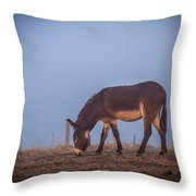 Donkey In The Fog Throw Pillow