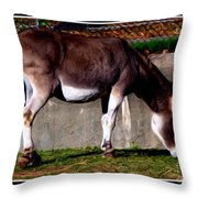 Donkey With Oil Painting Effect Throw Pillow