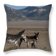 Donkeys In The Colorado Rockies Throw Pillow