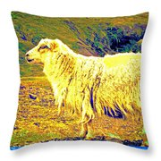 Dont Be Sheep, You Said, But I Just Can't Help It Throw Pillow