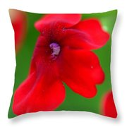 Don't Be Shy Throw Pillow