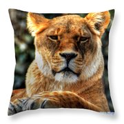 Don't Blink... Throw Pillow