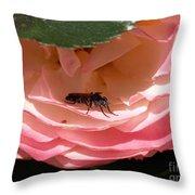 Don't Bug Me Throw Pillow