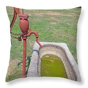 Don't Drink The Water Throw Pillow