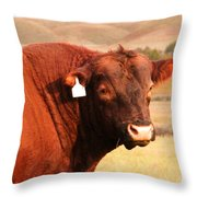 Dont Mess With The Bull Throw Pillow