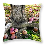 Don't Sit Under The Apple Tree With Anyone Else But Me Throw Pillow