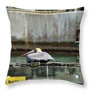 Don't Splash - Miami Florida Throw Pillow