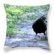 Don't Try With Me Throw Pillow