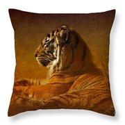 Don't Wake A Sleeping Tiger Throw Pillow
