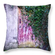 Door Covered In Ivy Throw Pillow