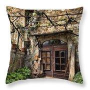 Door Montepulciano Italy Throw Pillow