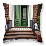 Doors Of Historic Charleston Throw Pillow