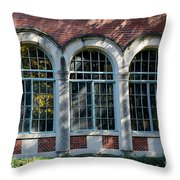 Dorm Throw Pillow