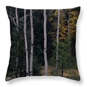 Dormant And Not Throw Pillow