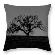 Dormant Tree On Hill Throw Pillow
