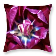 Double Amethyst Throw Pillow