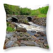 Double Arch Bridge Throw Pillow