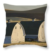 Double Barns Throw Pillow