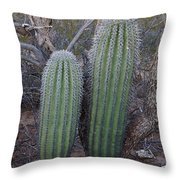Double Barrel Saguaro Throw Pillow