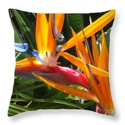 Double Bird Of Paradise - 1 Throw Pillow
