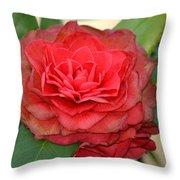 Double Blossom Camelias Throw Pillow