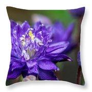 Double Blue Columbine Flower Throw Pillow