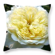 Double Cream Rose Throw Pillow