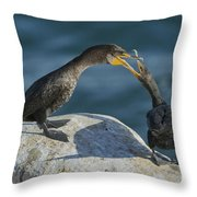 Double-crested Cormorants Throw Pillow