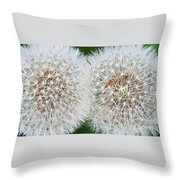 Double Dandelion Wishes Throw Pillow