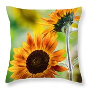 Double Dose Of Sunshine Throw Pillow