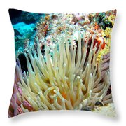 Double Giant Anemone And Arrow Crab Throw Pillow