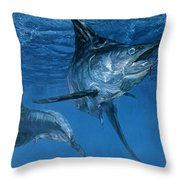 Double Header Makaira Nigricans, Blue Throw Pillow