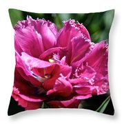 Double Pink Fringe Throw Pillow