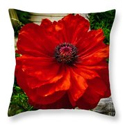 Double Poppy Throw Pillow
