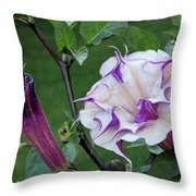 Double Purple Datura 6 Throw Pillow
