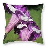 Double Purple Datura 8 Throw Pillow